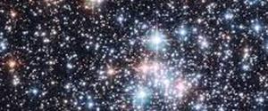 Amaris stars